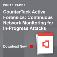 active forensics white paper for in-progress cyber attacks