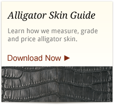 alligator-skin-guide