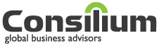 Consillium Global Business Advisors International Business Development and Export Consultants