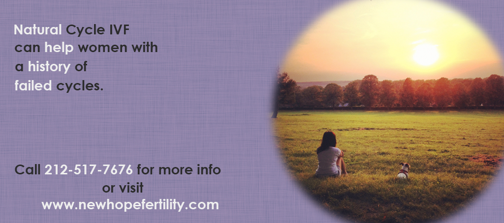 ivf for non responders