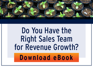 Right Sales Team for Revenue Growth