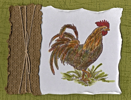 Cottage Farm Creations, Greeting Cards