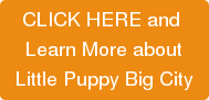 CLICK HERE and Learn More aboutLittle Puppy Big City